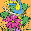 игра Только попугай на дереве окраску