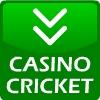 игра Крикет казино