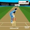 игра Бластер крикет мастер