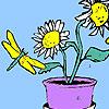 игра Подсолнечник цветы и летит окраски