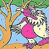 игра Леди розовые попугай окраски