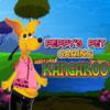 kangaroo игры