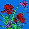 игра Weasel garden coloring